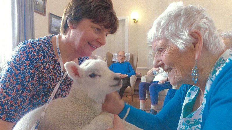 2 women petting a little lamb