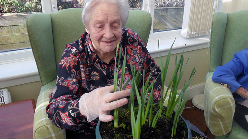 A woman planting bulbs in Morlich House conservatory